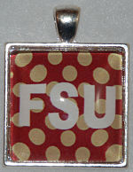 "Glass Pendant & Necklace - 1"" Square FSU/Polka Dot Background"