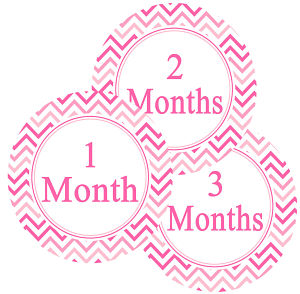 Baby Monthly Photo Stickers - Pink Chevron Stripe