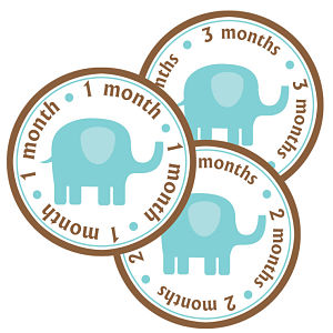Baby Monthly Photo Stickers - Elephant (Blue and Brown)