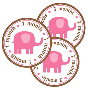 Baby Monthly Photo Stickers - Elephant (Pink and Brown)
