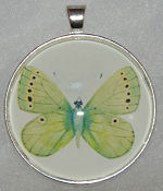 "Glass Pendant & Necklace - 1.5"" Round Green Butterfly"